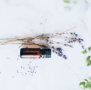 Lavender oil uses 683x1024
