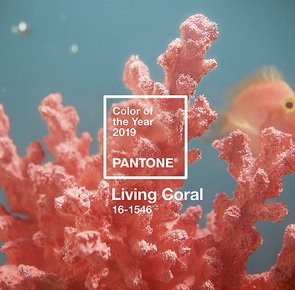 Pantone color of the year 2019 living coral homepage %d0%ba%d0%be%d0%bf%d0%b8%d1%8f