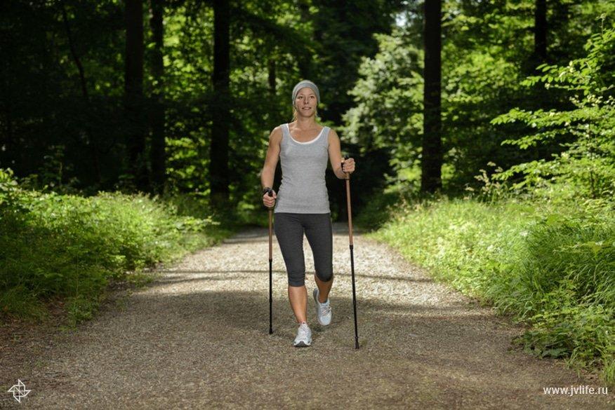 Скандинавская ходьба: как правильно ходить с палками