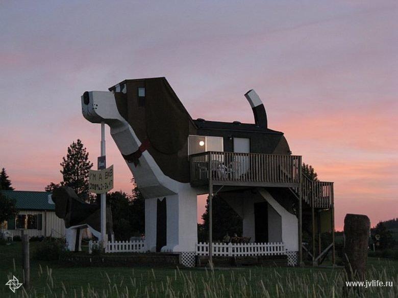 Dog bark park inn 003