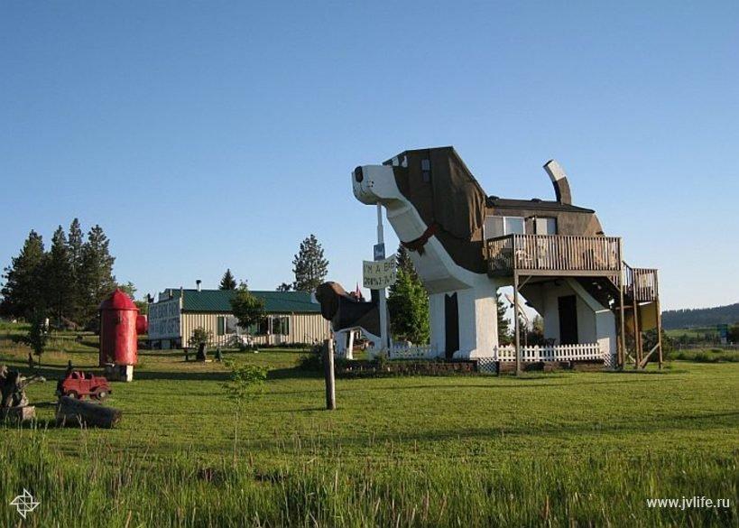 Dog bark park inn 002