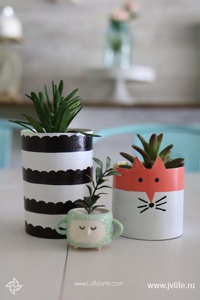 Diy cereal box succulent planter
