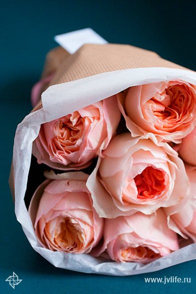 Buket iz pionovidnyh roz david austin juliet