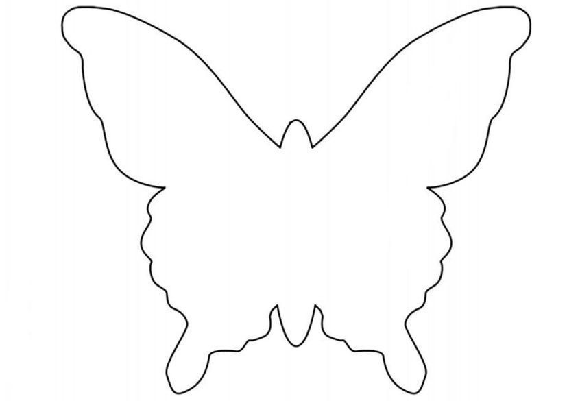 Buterflies 4 640x905