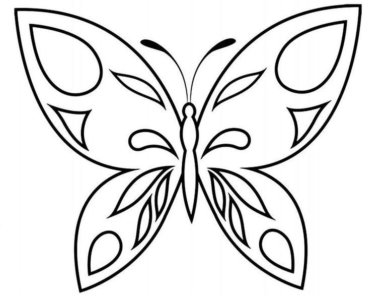 Buterflies delicate 2 640x905