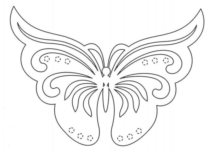 Buterflies delicate 1 640x905
